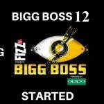 BiggBoss12VotingOnline