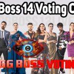 bigg boss voting online