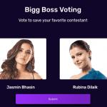 Bigg Boss 13th Week voting